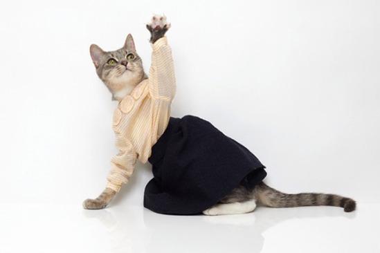 united-bamboo-cat-calendar-2-img_assist_custom